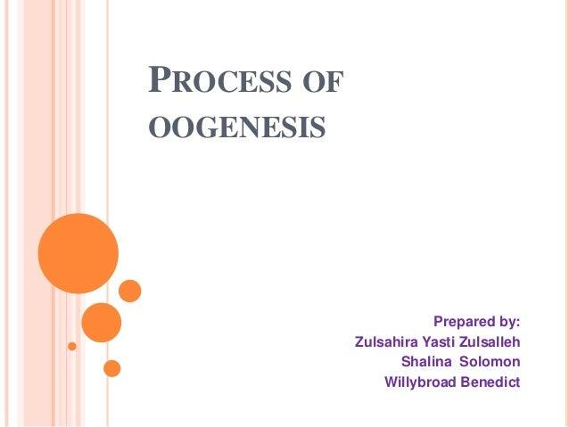 PROCESS OF OOGENESIS Prepared by: Zulsahira Yasti Zulsalleh Shalina Solomon Willybroad Benedict