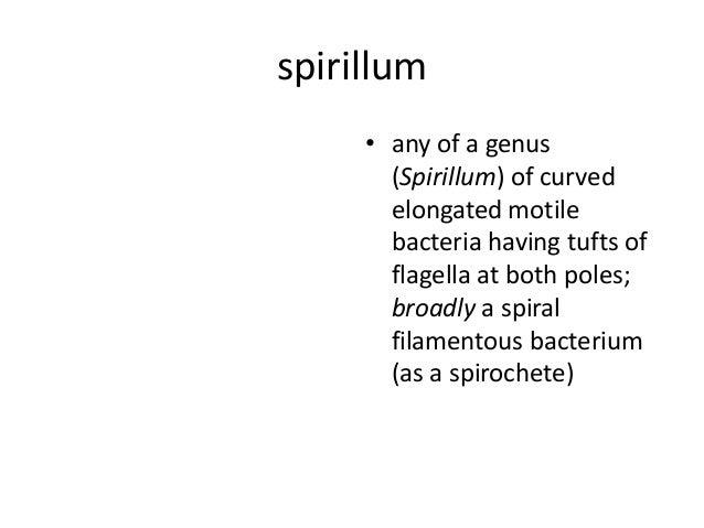 Biology lab exam