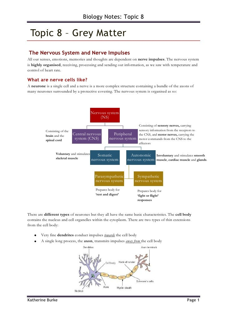 Topic 8 – Grey Matter<br /> The Nervous System and Nerve Impulses<br />All our senses, emotions, memories and thoughts ar...