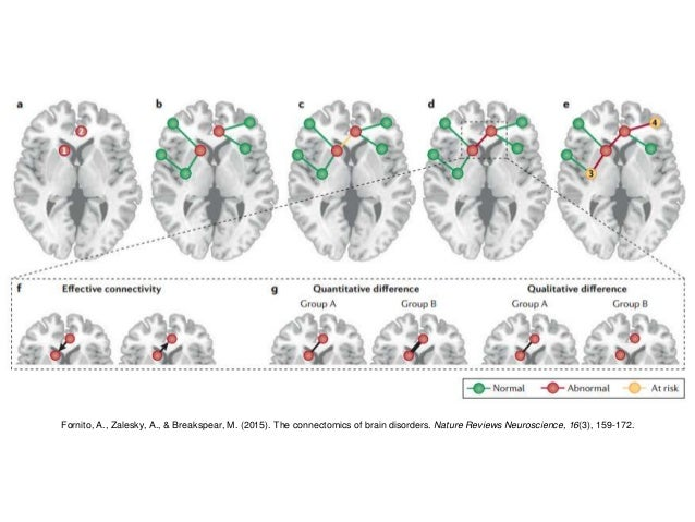 The Biology of Mental Illness