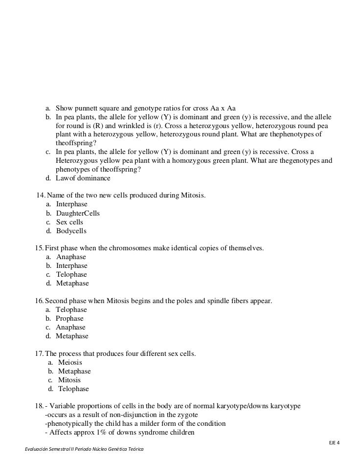genetic exam 2 A fact sheet about genetic testing for inherited cancer risk includes types of tests, who should consider testing, and how to understand test results.