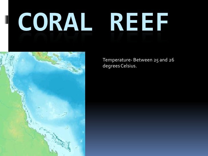CORAL REEF                     Temperature- Between 25 and 26  By: Kyle Kendall   degrees Celsius.