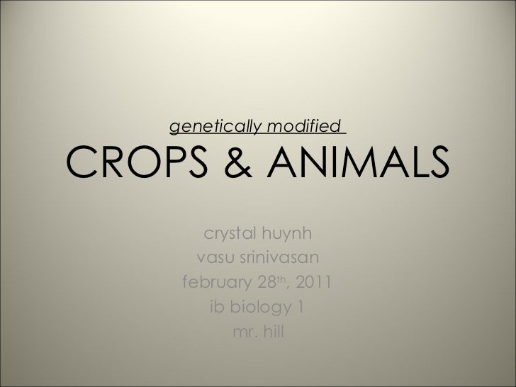 genetically modified  CROPS & ANIMALS crystal huynh vasu srinivasan february 28 th , 2011 ib biology 1 mr. hill