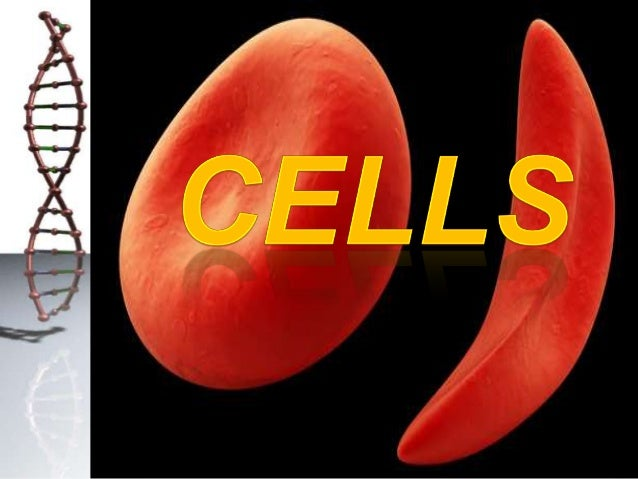 Cell – basic structural and functional unit  • The cell is the basic structural, functional and biological unit of all kno...