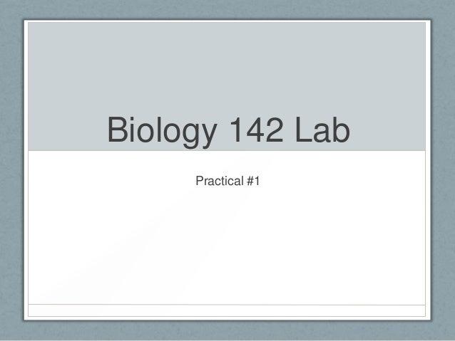 Biology 142 Lab     Practical #1