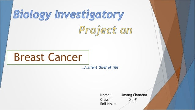 Biology Project On Cancer For Class 12 Pdf Free | My First JUGEM
