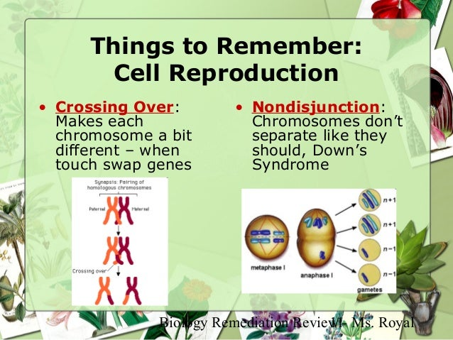 biology 11 review Biology 11 answer key unit 1 • mhr tr 3 33 a cell membrane is referred to as selectively permeable because not all materials can cross it some are kept.