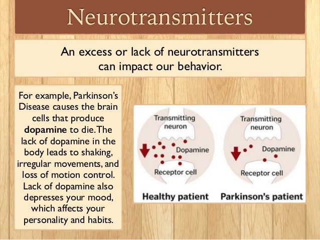 """neurotransmitter serotonin cause depression psychology essay They're psychiatrists' favourite neurotransmitters, and are hence very popular  amongst psych drug  in particular, it's widely believed that serotonin is the  brain's """"happy chemical"""" and that clinical depression is caused by low serotonin  while  the patient reported on in this paper suffered parkinsonian."""