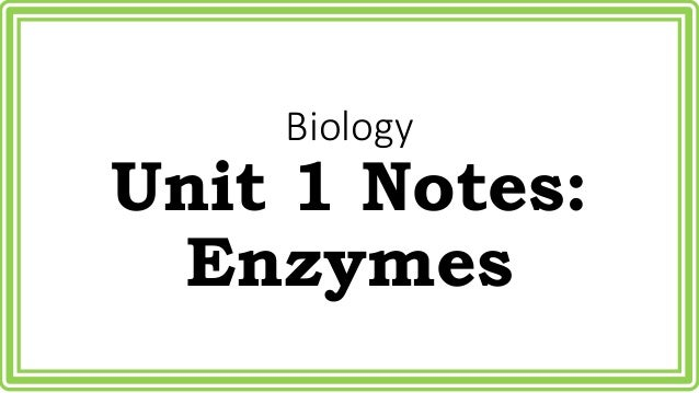 biology enzyme summary Enzymes are specialized protein molecules facilitating most of the body's  metabolic processes – such as, supplying energy, digesting foods,.