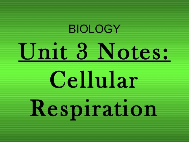biology unit 5 notes The h+ ions diffuse down the electrochemical gradient 5 this stimulates the  activation of the atpase enzyme to catalyse the production of atp unit 5 page 2  is.