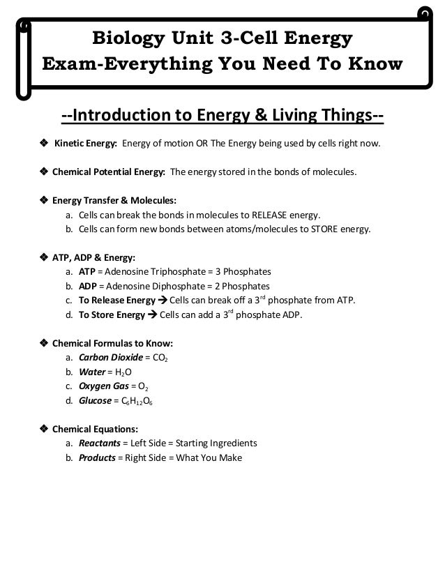 Biology Unit 3-Cell Energy Exam-Everything You Need To Know --Introduction to Energy & Living Things- Kinetic Energy: Ene...