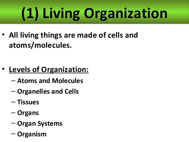 biology unit 7 organ systems living organization notes. Black Bedroom Furniture Sets. Home Design Ideas