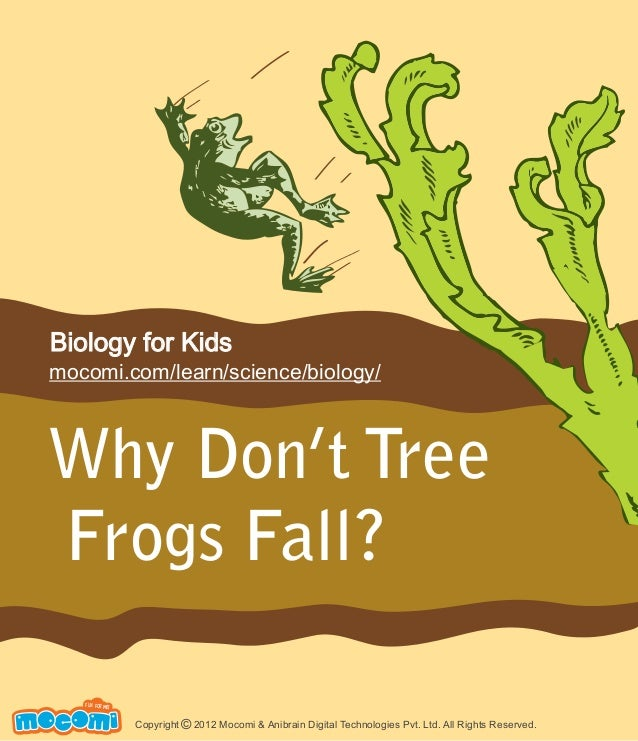 Why Don't Tree Frogs Fall? UNF FOR ME! Copyright 2012 Mocomi & Anibrain Digital Technologies Pvt. Ltd. All Rights Reserved...