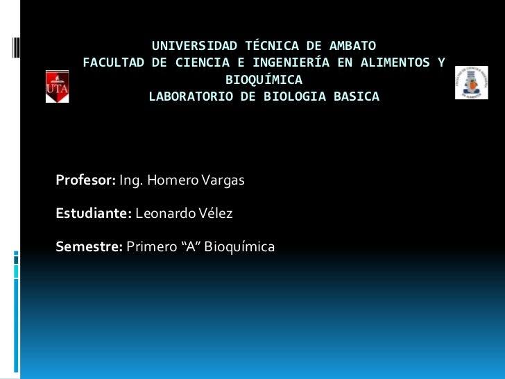 UNIVERSIDAD TÉCNICA DE AMBATO    FACULTAD DE CIENCIA E INGENIERÍA EN ALIMENTOS Y                      BIOQUÍMICA          ...