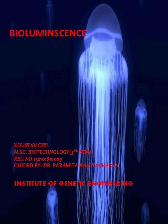 BIOLUMINSCENCE KOUSTAV GIRI M.SC. BIOTECHNOLOGY(3RD SEM) REG NO.152101810009 GUIDED BY: DR. PARAMITA BHATTACHARYA INSTITUT...