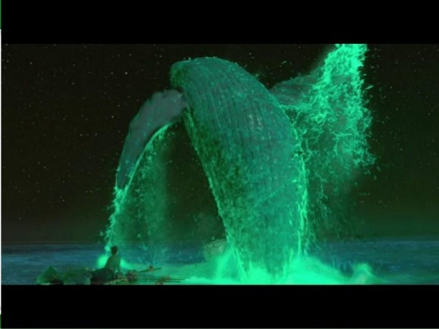 Bioluminescence and its applications and economic feasibility for Life of pi sparknotes