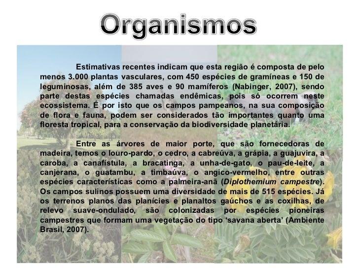 Estimativas recentes indicam que esta região é composta de pelo menos 3.000 plantas vasculares, com 450 espécies de gramín...