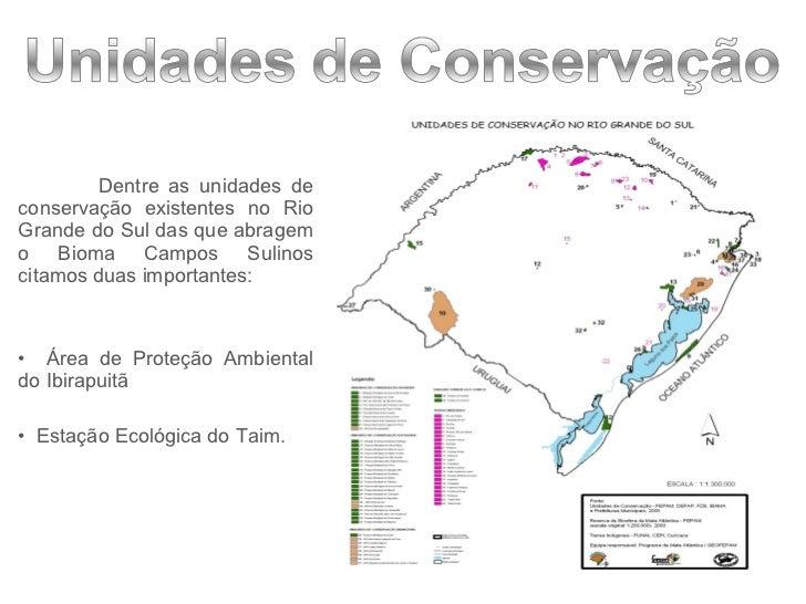 <ul><li>Dentre as unidades de conservação existentes no Rio Grande do Sul das que abragem o Bioma Campos Sulinos citamos d...