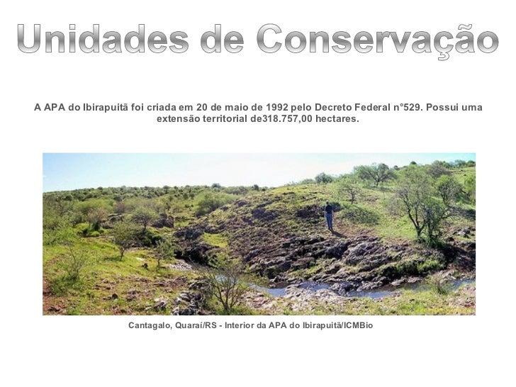 <ul><li>A APA do Ibirapuitã foi criada em 20 de maio de 1992 pelo Decreto Federal n°529. Possui uma extensão territorial d...