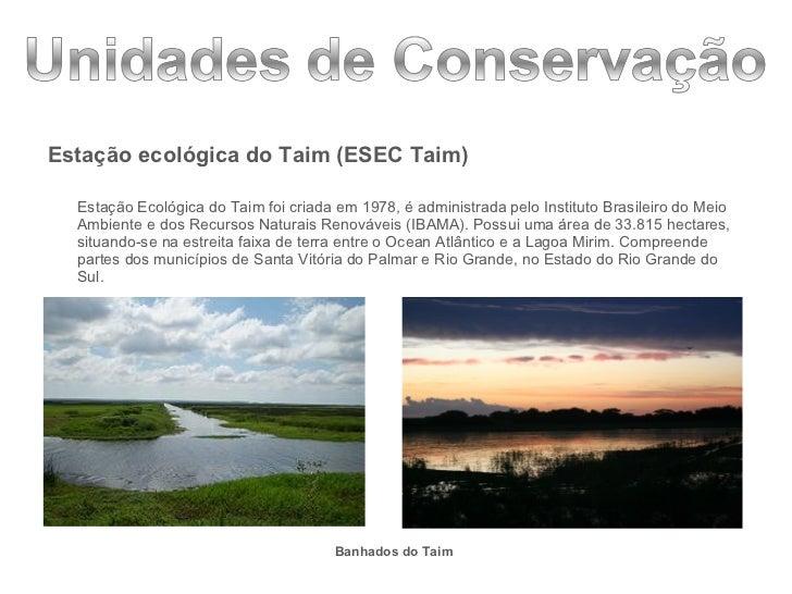 <ul><li>Estação ecológica do Taim (ESEC Taim) </li></ul><ul><li>Estação Ecológica do Taim foi criada em 1978, é administra...
