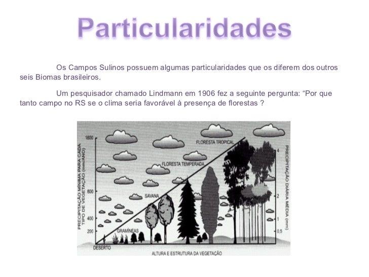 Os Campos Sulinos possuem algumas particularidades que os diferem dos outros seis Biomas brasileiros.  Um pesquisador cham...