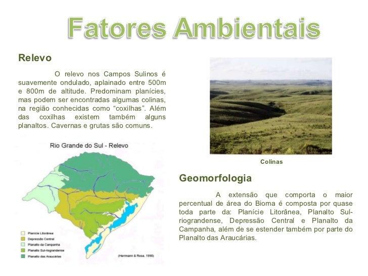 Colinas Relevo  O relevo nos Campos Sulinos é suavemente ondulado, aplainado entre 500m e 800m de altitude. Predominam pl...