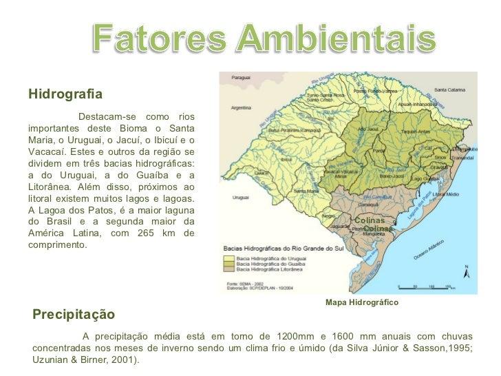 Mapa Hidrográfico Hidrografia   Destacam-se como rios importantes deste Bioma o Santa Maria, o Uruguai, o Jacuí, o Ibicuí ...