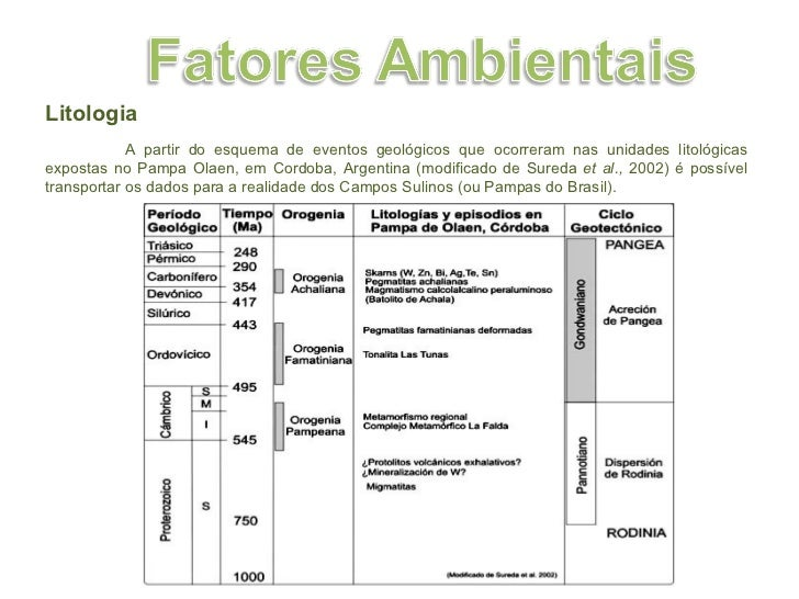 Litologia A partir do esquema de eventos geológicos que ocorreram nas unidades litológicas expostas no Pampa Olaen, em Cor...