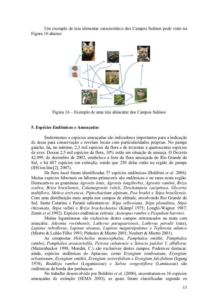 Um exemplo de teia alimentar característico dos Campos Sulinos pode visto na Figura 16 abaixo:                Figura 16 – ...