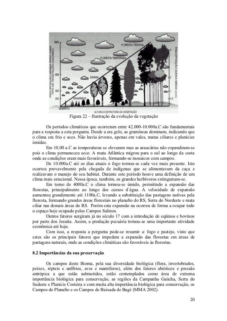 Figura 22 – Ilustração da evolução da vegetação          Os períodos climáticos que ocorreram entre 42.000-10.000a.C são f...