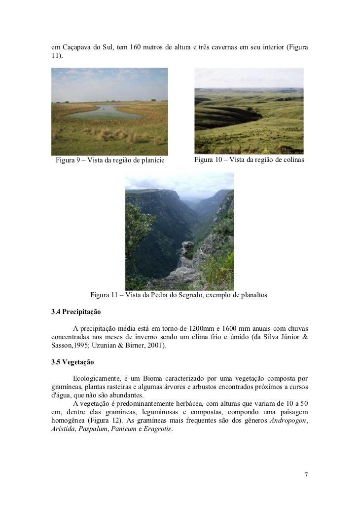 em Caçapava do Sul, tem 160 metros de altura e três cavernas em seu interior (Figura 11).      Figura 9 – Vista da região ...