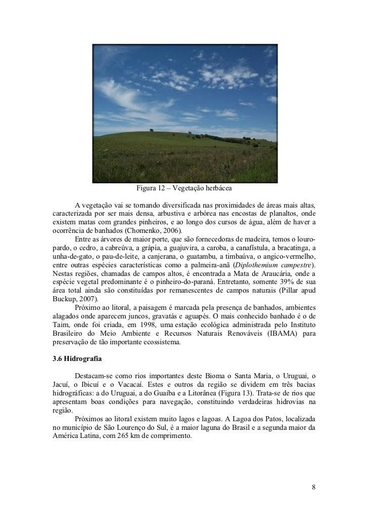 Figura 12 – Vegetação herbácea         A vegetação vai se tornando diversificada nas proximidades de áreas mais altas, car...