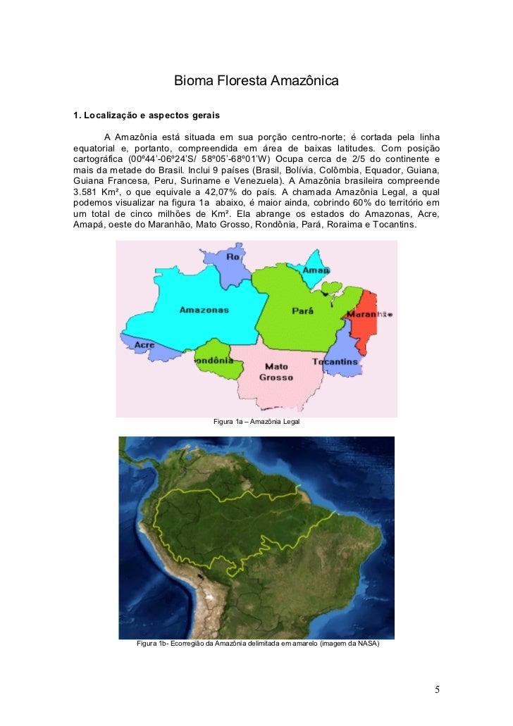 Bioma Floresta Amazônica  1. Localização e aspectos gerais         A Amazônia está situada em sua porção centro-norte; é c...