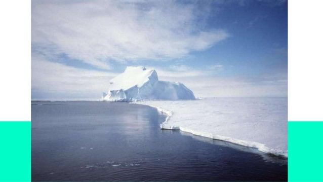bioma antártico De:Juani.F y Juani.T