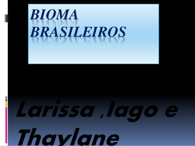 BIOMA  BRASILEIROS  Larissa ,Iago e  Thaylane