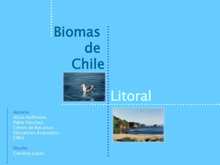 Biomas                      de                     Chile                             LitoralAutoresAlicia Hoffmann.Pablo S...
