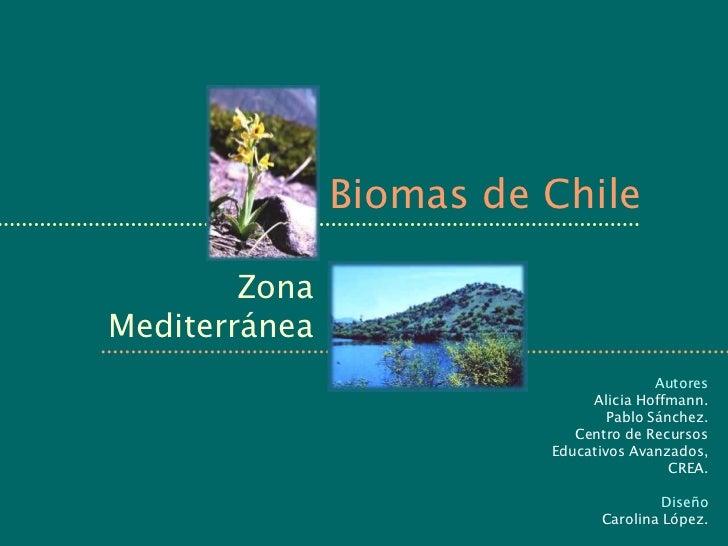 Biomas de Chile        ZonaMediterránea                                        Autores                              Alicia...