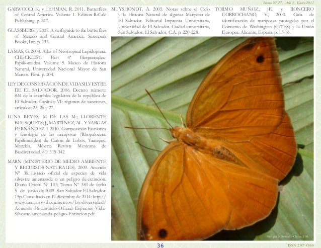 Bulletin Of The Florida Museum Of Natural History Volume