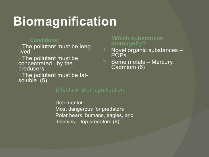 Biomagnification <ul><li>Conditions: </li></ul><ul><li>The pollutant must be long-lived.  </li></ul><ul><li>The pollutant ...