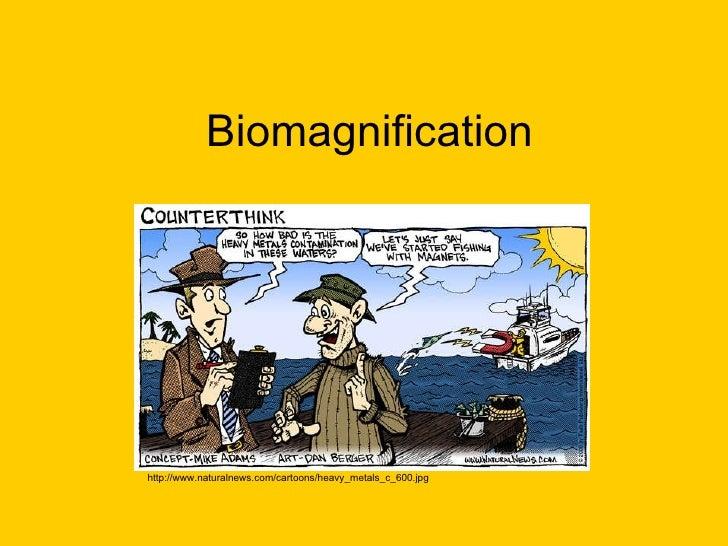 Biomagnification http://www.naturalnews.com/cartoons/heavy_metals_c_600.jpg