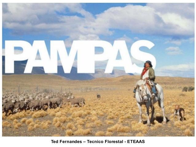 Ted Fernandes – Tecnico Florestal - ETEAAS