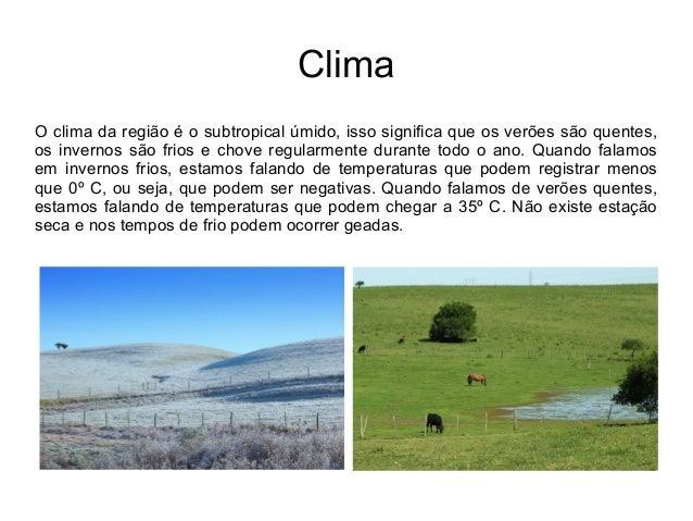 Bioma pampa Slide 3