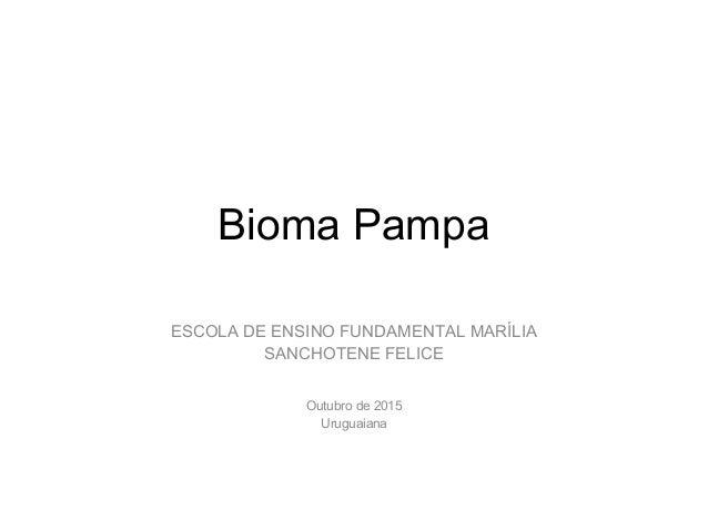 Bioma Pampa ESCOLA DE ENSINO FUNDAMENTAL MARÍLIA SANCHOTENE FELICE Outubro de 2015 Uruguaiana