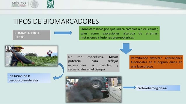 BIOMARCADORES AMBIENTALES PDF DOWNLOAD