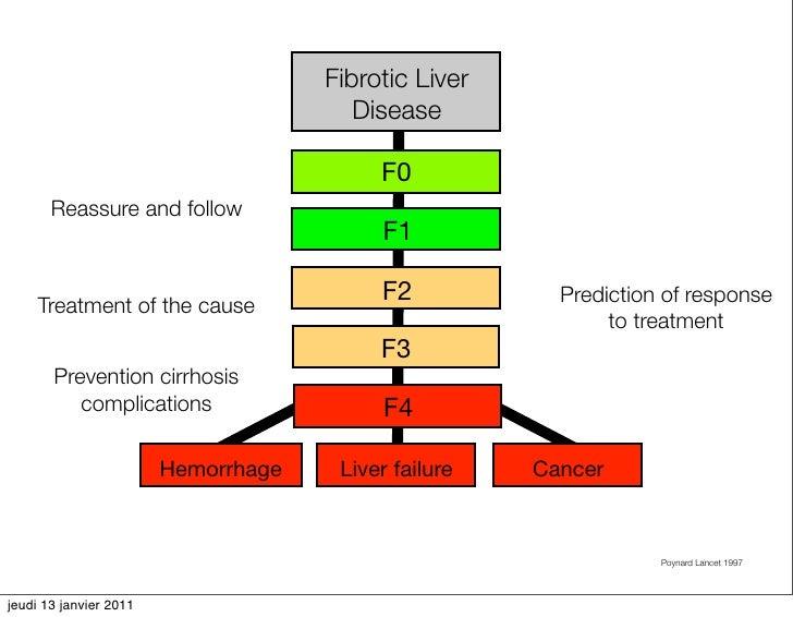 Liver Disease Pdf