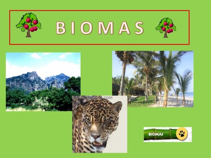 • Los BIOMAS son grandes ecosistemas   formados por comunidades de seres vivos   que ocupan un espacio físico con condicio...
