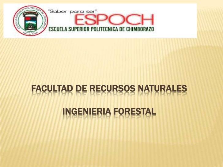 <br /><br />FACULTAD DE RECURSOS NATURALESINGENIERIA FORESTAL<br />
