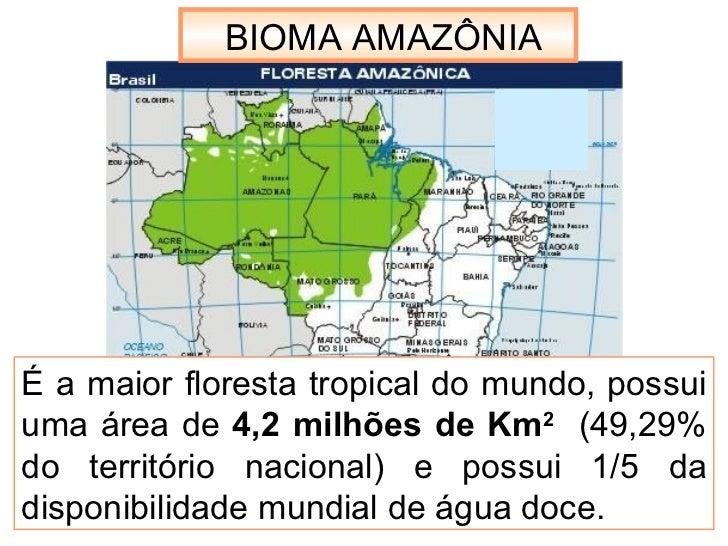 É a maior floresta tropical do mundo, possui uma área de  4,2 milhões de Km 2   (49,29% do território nacional) e possui 1...