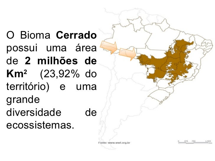 O Bioma  Cerrado  possui uma área de  2 milhões de Km 2   (23,92% do território)  e uma grande diversidade de ecossistemas.