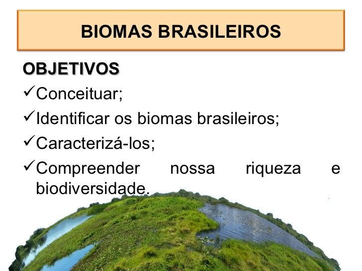 Biomas Slide 2